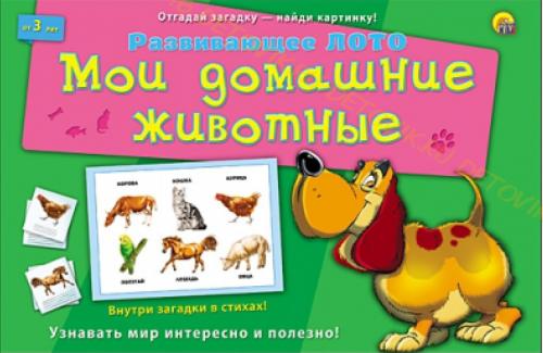 """Развивающая игра """"Мои домашние животные"""" Рыжий кот"""