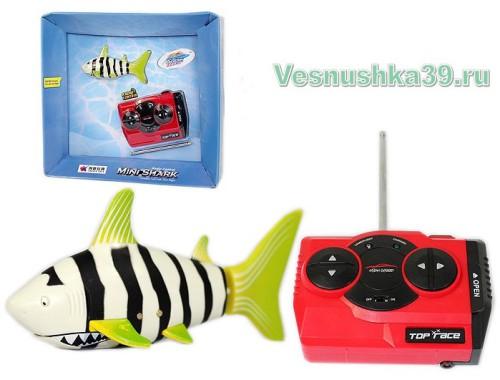 akula-na-r-u-mini-shark (1)