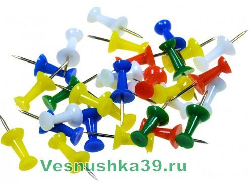 knopki-gvozdiki-50sht (1)