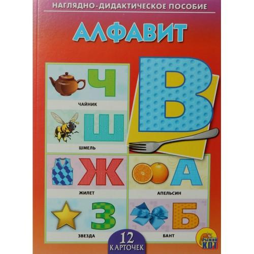 obuchayushhie-kartochki-12sht-nagl-did-posob-ryzhij-kot (1)
