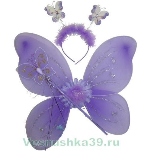 krylya-volshebnaya-palochka-obodok (1)