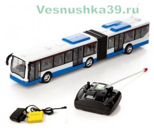 avtobus-s-garmoshkoj-na-r-u-deluxe-bus (1)