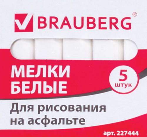 melki-belye-5sht-brauberg (1)