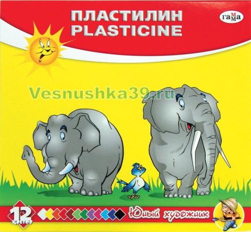 plastilin-12cv-yunyj-hudozhnik-gamma (1)